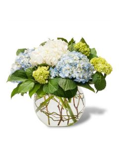 Mighty Hydrangeas